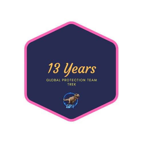 badge 13 years