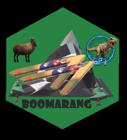badge BOOM-BOOMARANG
