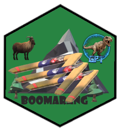 badge BOOM-BOOM-BOOMARANG