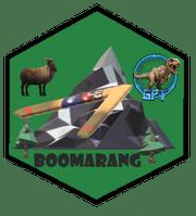 badge BOOMARANG